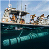 Global Unmanned Underwater Vehicles (UUV) for Defense and Security Market and Technology Forecast to 2025